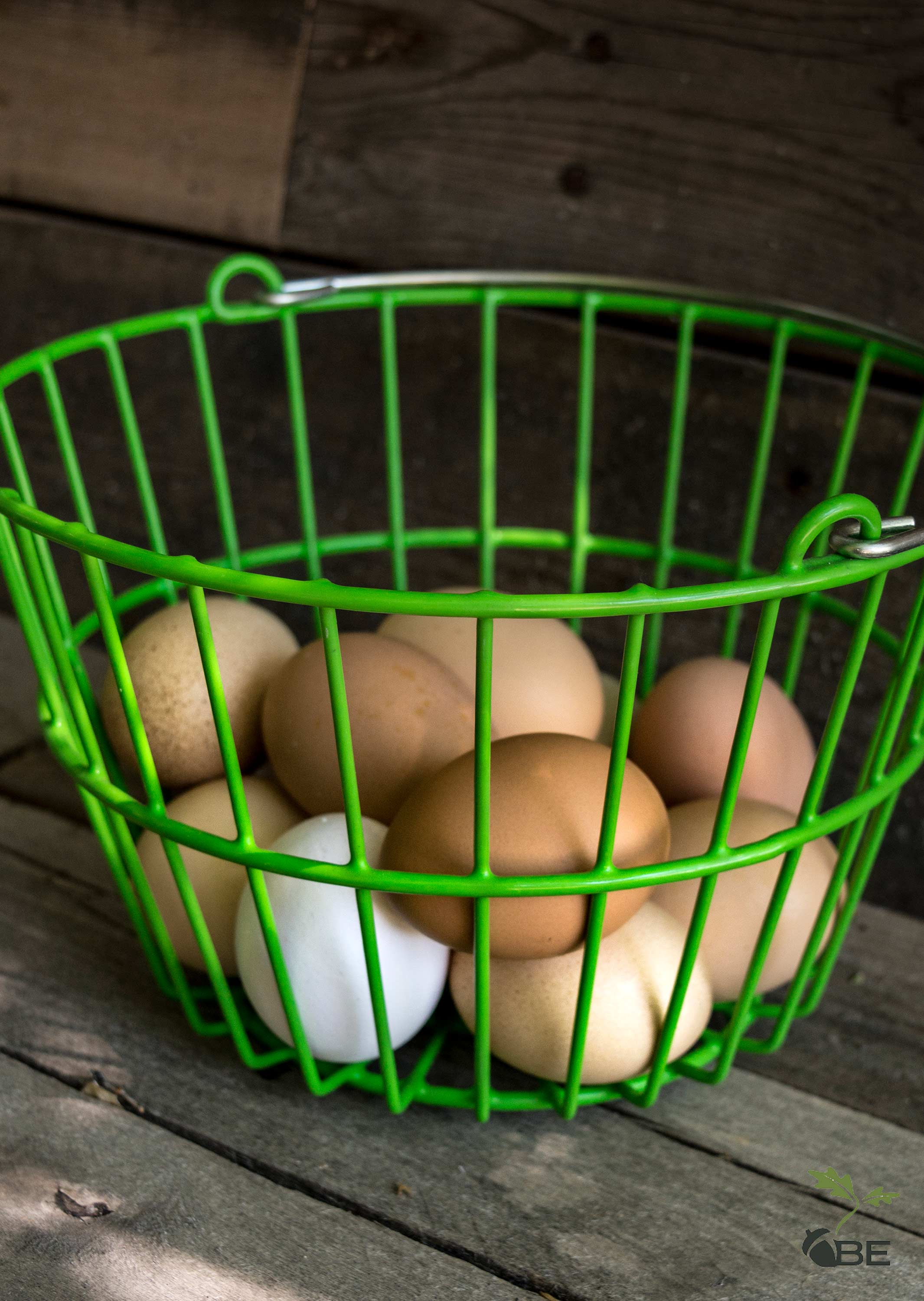 Fresh eggs in a green wire basket