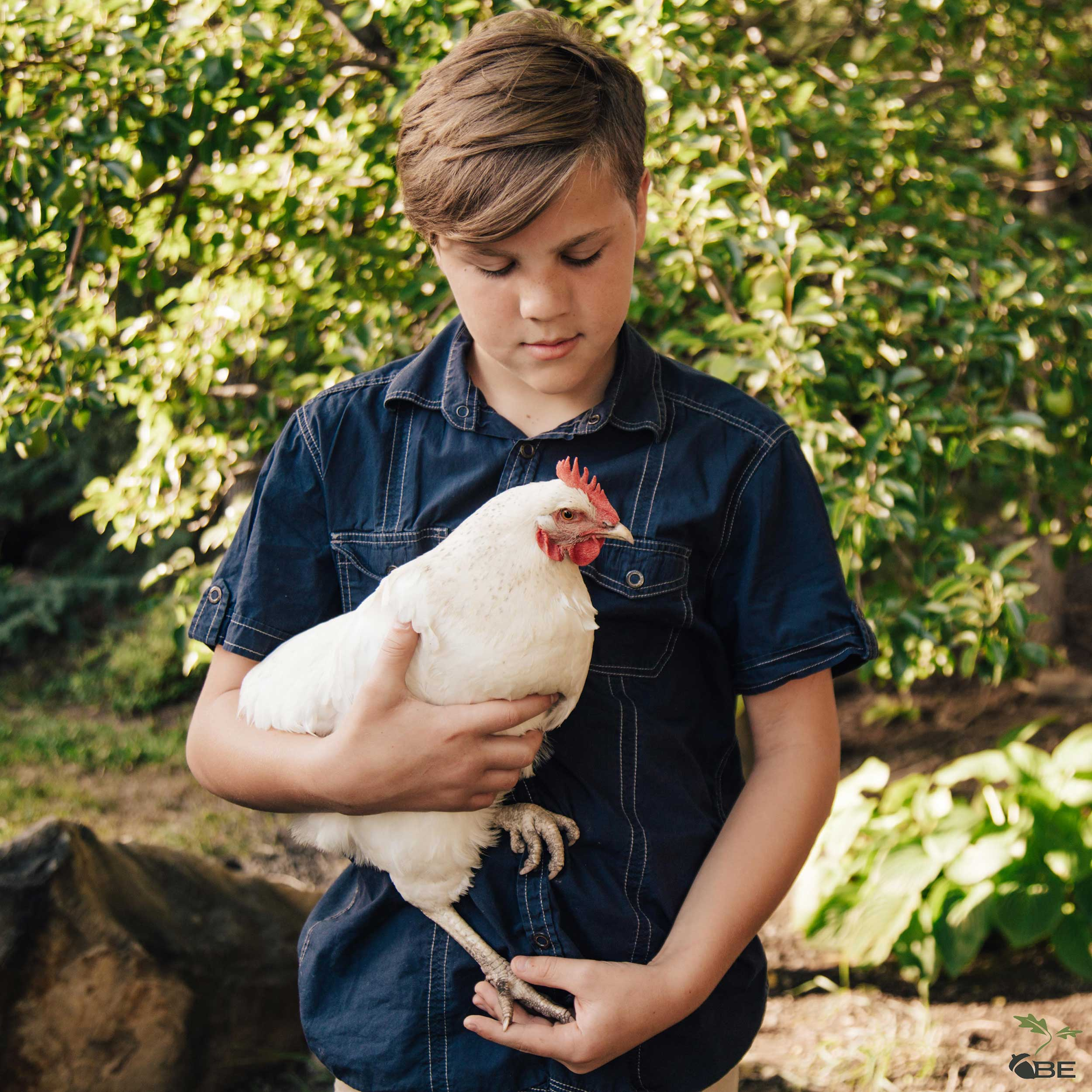 Young boy holding white chicken